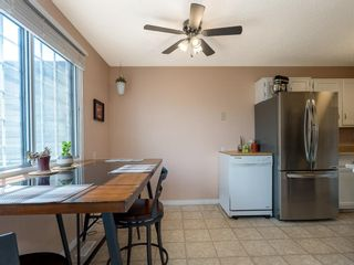 Photo 9: 4108 58 Street NE in Calgary: Temple Semi Detached for sale : MLS®# A1114394
