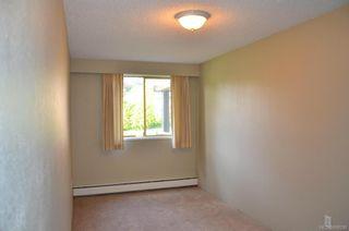 Photo 11: 127 1025 Inverness Rd in Saanich: SE Quadra Condo for sale (Saanich East)  : MLS®# 698930