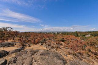 Photo 26: 306 2757 Quadra St in Victoria: Vi Hillside Condo for sale : MLS®# 886266
