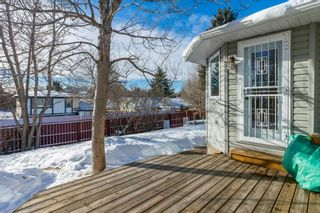 Photo 38: 5535 Dalrymple Hill NW in Calgary: Dalhousie Detached for sale : MLS®# A1071835