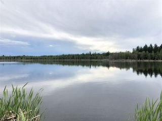Photo 5: 26429 TWP RD 635: Rural Westlock County Manufactured Home for sale : MLS®# E4204957