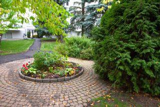 Photo 2: 1266 48 Street in Edmonton: Zone 29 Townhouse for sale : MLS®# E4263927