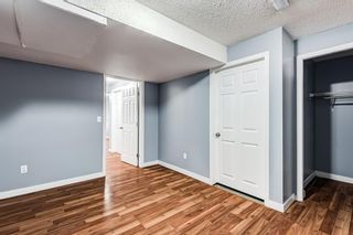 Photo 31: 18 Erin Meadow Close SE in Calgary: Erin Woods Detached for sale : MLS®# A1143099
