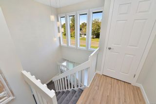Photo 24: 3990 Hopesmore Dr in Saanich: SE Mt Doug House for sale (Saanich East)  : MLS®# 887284