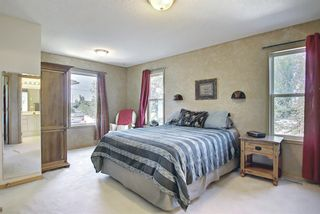 Photo 20: 131 Bridlewood Circle SW in Calgary: Bridlewood Detached for sale : MLS®# A1126092