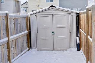Photo 3: 49 SADDLEBROOK Common NE in Calgary: Saddle Ridge Semi Detached for sale : MLS®# C4223039