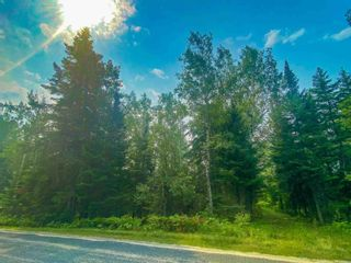 Photo 8: Lot 2 Fire Rd #2 McKenzie Portage RD in KENORA: Vacant Land for sale : MLS®# TB212223