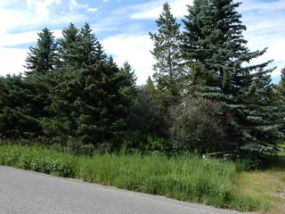Photo 15: 112152 266 Avenue W: Rural Foothills County Residential Land for sale : MLS®# A1065931
