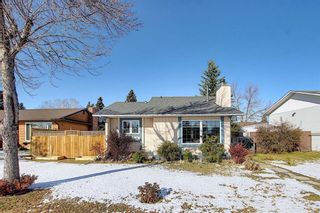 Photo 2: 348 TEMPLETON Circle NE in Calgary: Temple Detached for sale : MLS®# A1090566