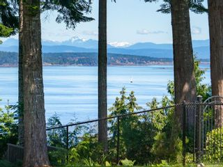 Photo 35: 4827 Ocean Trail in : PQ Bowser/Deep Bay House for sale (Parksville/Qualicum)  : MLS®# 877762