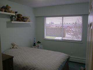 Photo 33: 20319 DEWDNEY TRUNK ROAD in MAPLE RIDGE: Home for sale : MLS®# V1044822