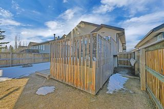 Photo 24: 101 Willow Green: Olds Detached for sale : MLS®# A1143950