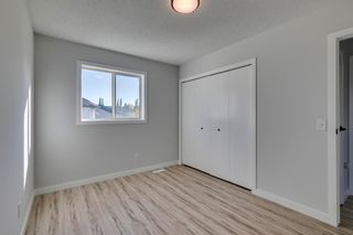 Photo 28: 11 Bridlewood Gardens SW in Calgary: Bridlewood Detached for sale : MLS®# A1149617