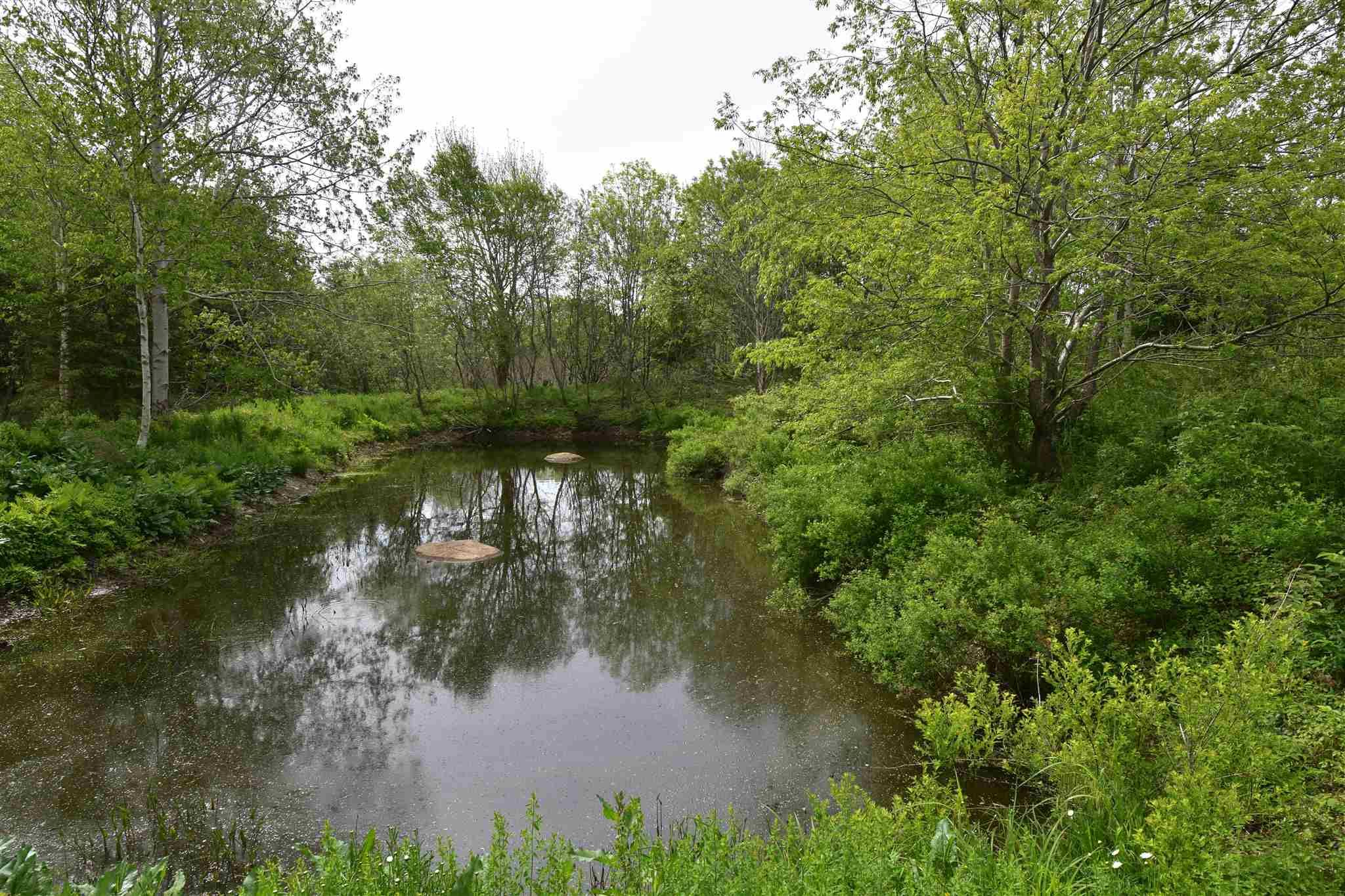 Main Photo: Lot No 340 Highway in Havelock: 401-Digby County Vacant Land for sale (Annapolis Valley)  : MLS®# 202114048