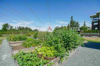 "Photo 36: 122 15137 33 Avenue in Surrey: Morgan Creek Condo for sale in ""Prescott Commons"" (South Surrey White Rock)  : MLS®# R2556576"