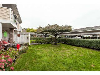 """Photo 18: 136 5641 201 Street in Langley: Langley City Townhouse for sale in """"The Huntington"""" : MLS®# R2409027"""