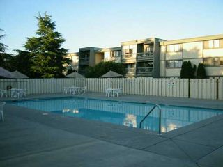 "Photo 7: 3371 SPRINGFIELD Drive in Richmond: Steveston North Condo for sale in ""DOLPHIN COURT"" : MLS®# V606724"