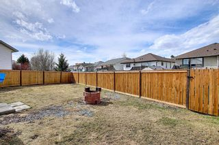 Photo 32: 23 Applecrest Court SE in Calgary: Applewood Park Detached for sale : MLS®# A1079523