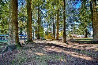 Photo 19: 2245 HAVERSLEY AVENUE in Coquitlam: Central Coquitlam House for sale : MLS®# R2111028