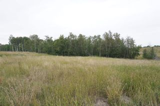 Photo 7: 14 53214 RR13: Rural Parkland County Rural Land/Vacant Lot for sale : MLS®# E4266456