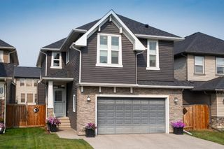 Main Photo: 212 Evansfield Way NW in Calgary: Evanston Detached for sale : MLS®# A1135540