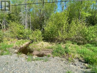 Photo 3: 5264 Rte 770 in Rollingdam: Vacant Land for sale : MLS®# NB058269