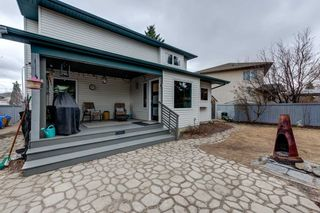 Photo 48: 2 Hesse Place: St. Albert House for sale : MLS®# E4236996