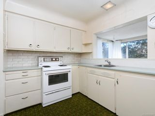 Photo 10: 905 Lawndale Ave in Victoria: Vi Fairfield East House for sale : MLS®# 838494