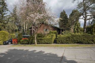 Photo 2: 19903 46A Avenue in Langley: Langley City House for sale : MLS®# R2557011