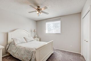 Photo 20: 16 Meadow Close: Cochrane Detached for sale : MLS®# A1088829