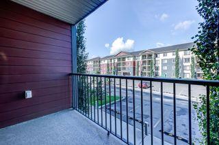 Photo 26: 204 5816 MULLEN Place in Edmonton: Zone 14 Condo for sale : MLS®# E4262303