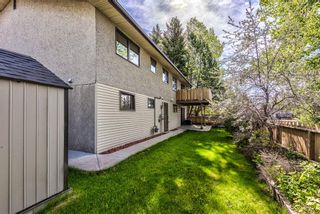 Photo 43: 204 Dalgleish Bay NW in Calgary: Dalhousie Detached for sale : MLS®# A1144517