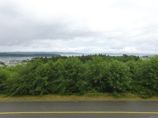 Photo 2: 2055 Pioneer Hill Dr in : NI Port McNeill Land for sale (North Island)  : MLS®# 864089