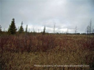 Photo 8: 2489 Concession Road 3 Road in Ramara: Brechin Property for sale : MLS®# X3371303
