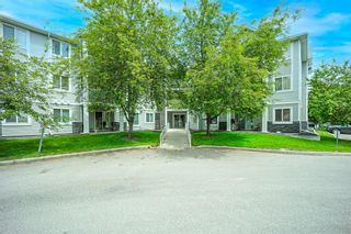 Photo 2: 212 3212 Valleyview Park SE in Calgary: Dover Apartment for sale : MLS®# A1116209