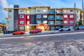 Main Photo: 440 23 MILLRISE Drive SW in Calgary: Millrise Apartment for sale : MLS®# A1094799