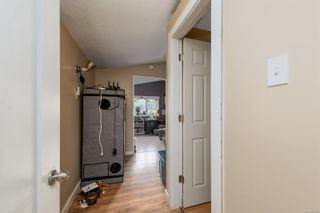 Photo 36: 454 Community Rd in : NI Kelsey Bay/Sayward House for sale (North Island)  : MLS®# 875966
