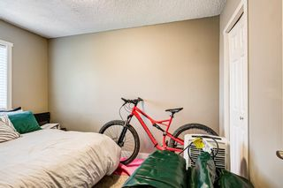 Photo 14: 8516 Bowness Road NW in Calgary: Bowness Detached for sale : MLS®# A1129149