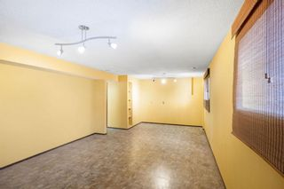 Photo 25: 128 Dovertree Place SE in Calgary: Dover Semi Detached for sale : MLS®# A1075565