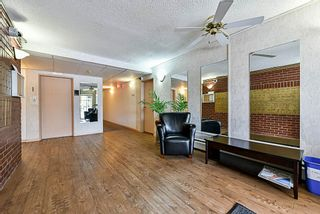 """Photo 3: 107 12096 222 Street in Maple Ridge: West Central Condo for sale in """"CANUCK PLAZA"""" : MLS®# R2386177"""
