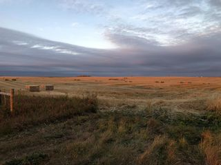 Photo 2: 30101 Highway 766: Rural Mountain View County Land for sale : MLS®# A1040103