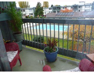 Photo 8: 305 3451 SPRINGFIELD Drive in Richmond: Steveston North Condo for sale : MLS®# V741634