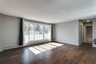 Photo 22: 307 903 19 Avenue SW in Calgary: Lower Mount Royal Apartment for sale : MLS®# A1152500