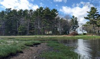 Photo 8: Lot 11 RAFUSE POINT Road in Pleasantville: 405-Lunenburg County Vacant Land for sale (South Shore)  : MLS®# 202122075