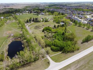 Photo 36: 116 Pine Creek Road: Rural Foothills County Detached for sale : MLS®# A1091741