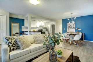 Photo 1: 2 1515 28 Avenue SW in Calgary: South Calgary Apartment for sale : MLS®# A1041285