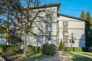 Photo 1: 243 202 WESTHILL Place in Port Moody: College Park PM Condo for sale : MLS®# R2575361