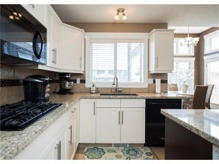 Photo 15: 34 CHAPALA Court SE in Calgary: Chaparral House for sale : MLS®# C4108128