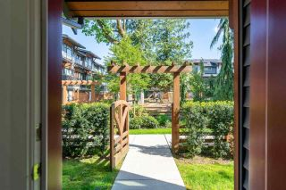 """Photo 7: 59 8508 204 Street in Langley: Willoughby Heights Townhouse for sale in """"Zetter Place"""" : MLS®# R2584531"""