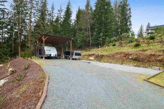 Photo 33: 12433 MCNUTT Road in Maple Ridge: Northeast House for sale : MLS®# R2547502